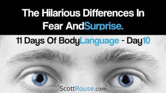 The Hilarious Difference in Fear and Surprise - 700