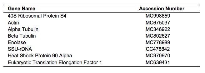 APCMvol02.1.Table02