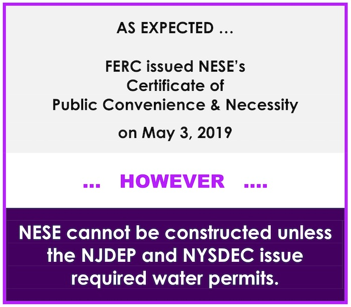 AS EXPECTED FERC issued NESE's Certificate of