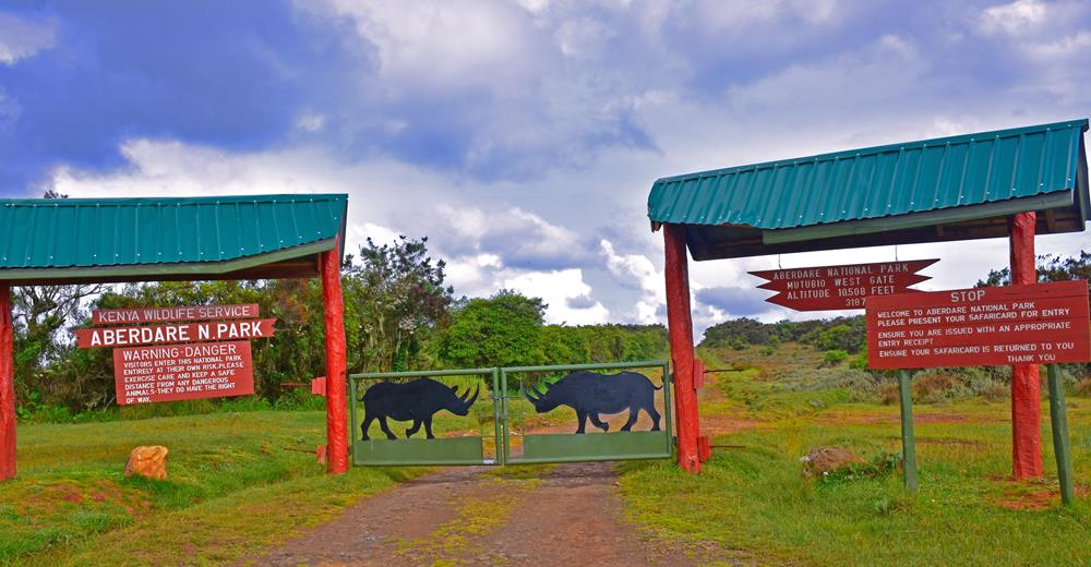 Aberdares_National_Park