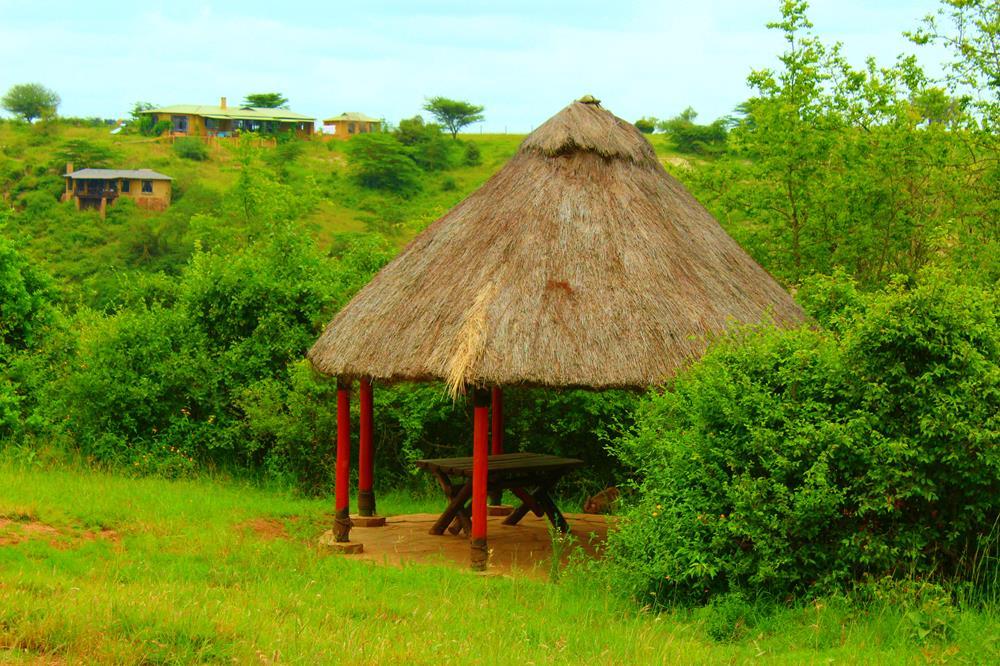 Nairobi_National_Park