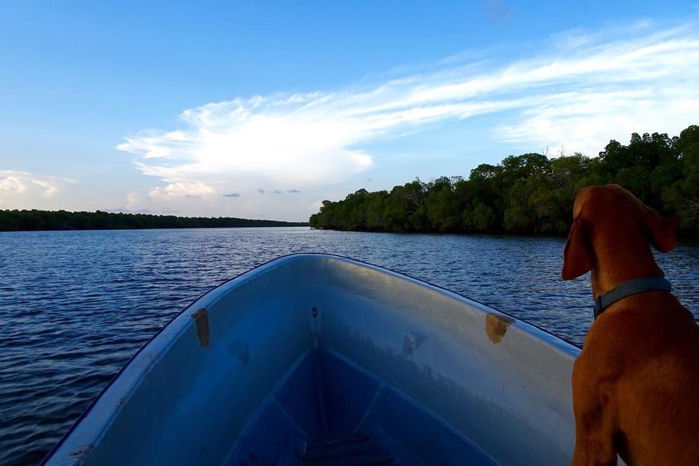 Lamu_ Island_Kenya