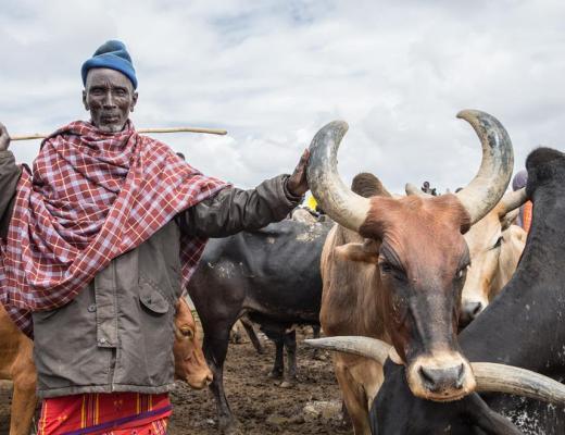 Rumuruti_Livestock_Market