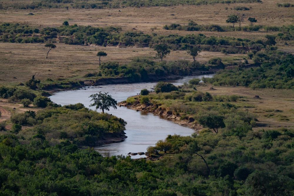 Maasai Mara River
