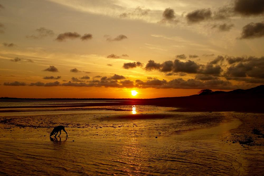 Beach Sunsets Kenya
