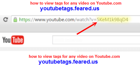 The section of the videos internet address to enter into the YouTube.com tags viewer online tool.