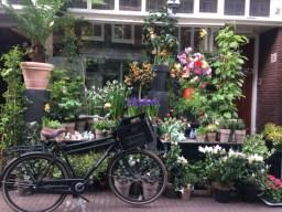 Amsterdam 2017-11