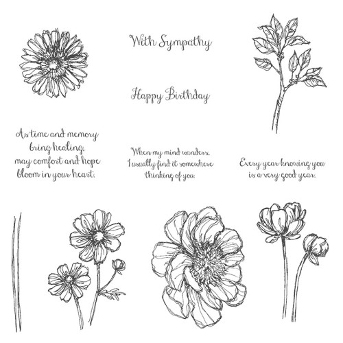 Bloom with Hope Stampin' Up!