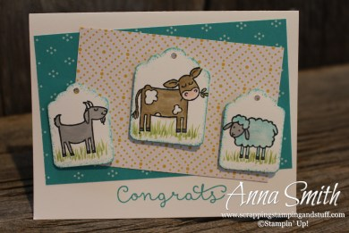 Congrats baby card made with Stampin' Up! Barnyard Babies and Cottage Greetings stamp sets