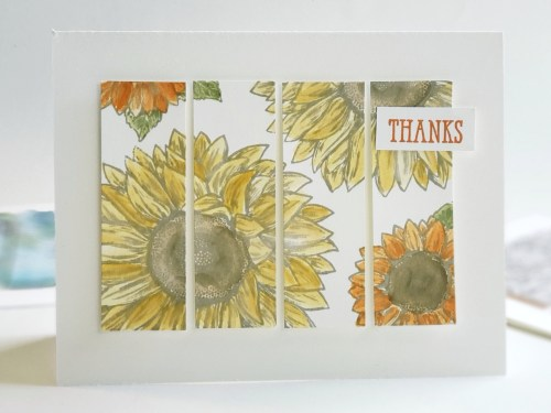 These Panel Card Ideas Can Be Made in Minutes! Simple Stamping Ideas, and Perfect For Beginning Card Makers!