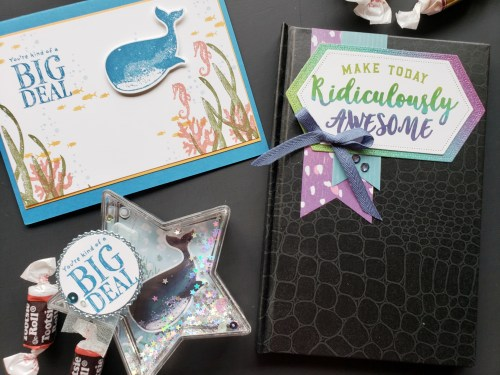 Take a look at these fun goodie boxes I sent my team members for our Stampin Up OnStage conference. They include some great DIY gift ideas!