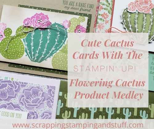 Stampin Up Flowering Cactus is an adorable product collection including cactus stamps, dies, paper and embellishments for amazingly adorable cactus cards.