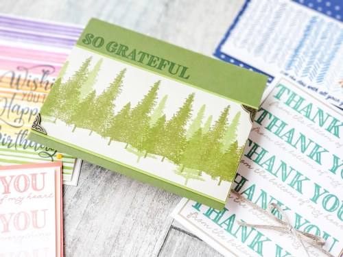 Can your MISTI do this? If not, try this amazing step stamping technique with the Stampin Up Stamparatus today.