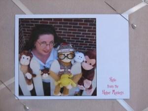 Photo Postcard by Modern Postcard