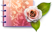 Pretty Book and Flower Icon
