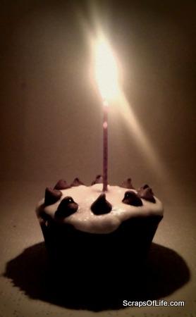 My celebratory gluten-free chocolate cupcake.