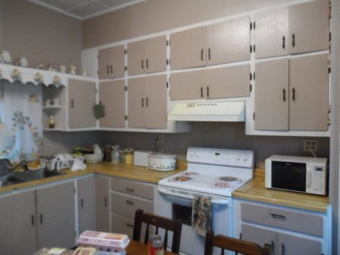 Ignoring the scary paint job, there, this kitchen is going to be awesome once I'm through with it! (photo from the Realtor.com listing)