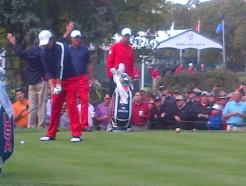 Tiger woods prepares to tee off at a PGA golf tournament