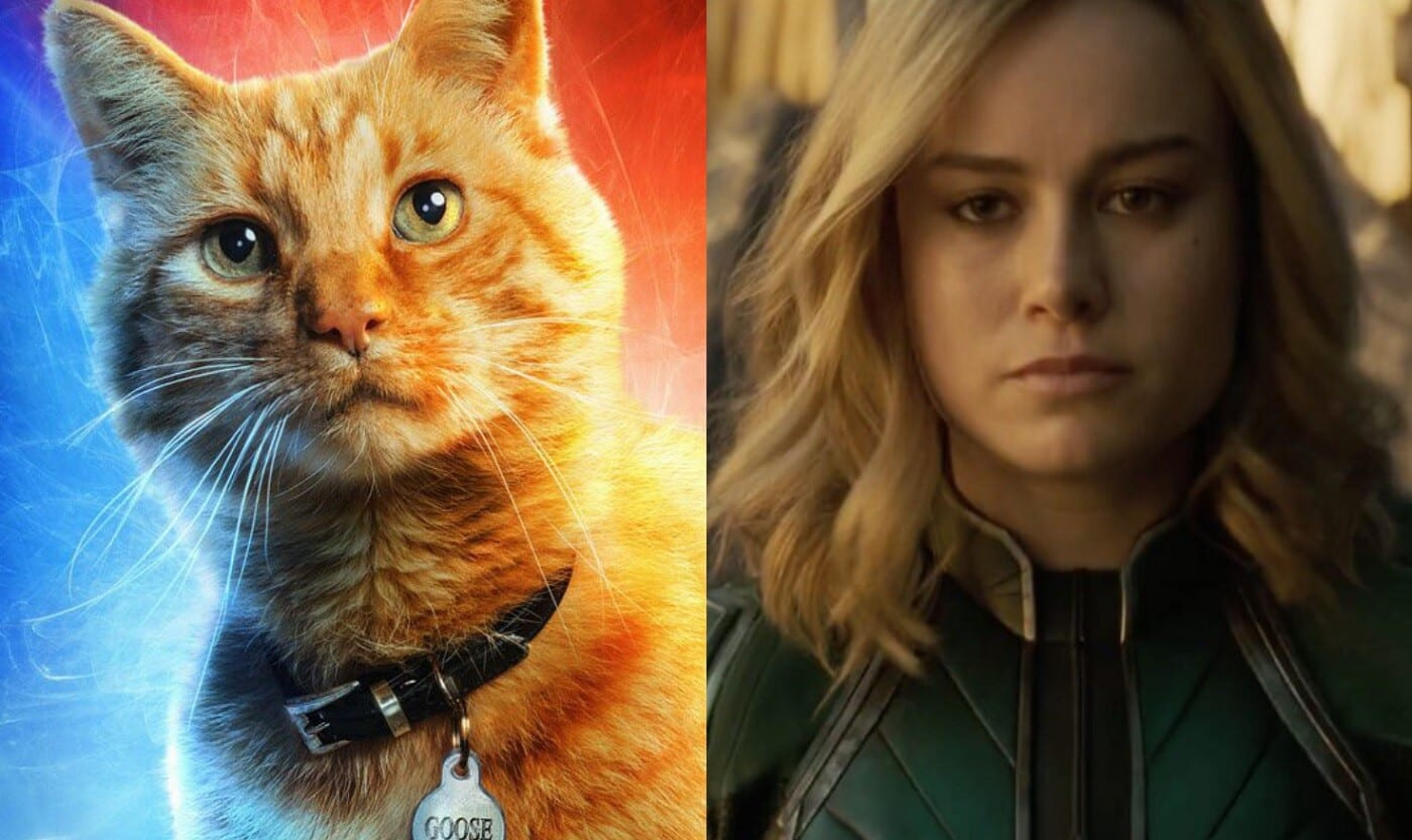 Captain Marvel Early Screening Reaction Says Its One Of