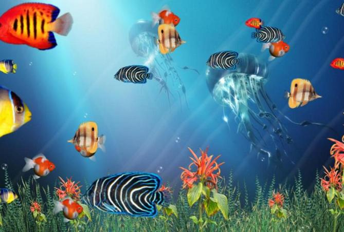 Wonderful Tropical Fish In The Ocean Aquarium 3D Screensaver