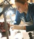 BONES:  Emily Deschanel in BONES | Co.  Cr:  Patrick McElhenney/FOX
