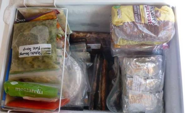 freezermeals1