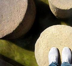 stepping stone photo