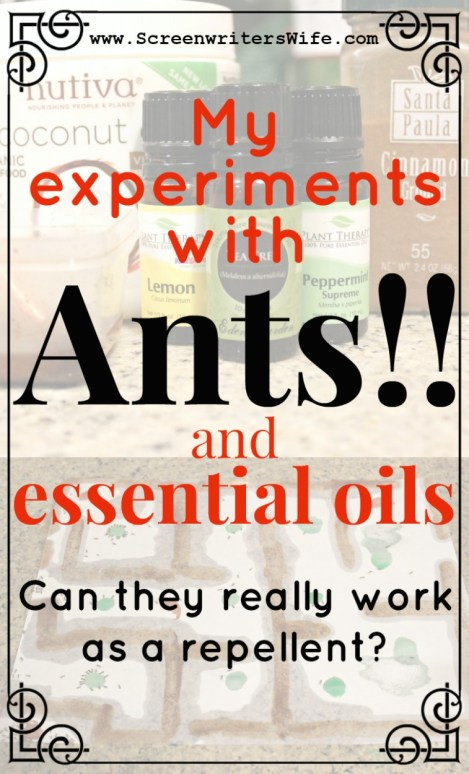 Ants have taken over my house! So I did some ant experimenting using a peppermint oil ant repellent recipe. Ha, let's see what works! Banish all the ants!