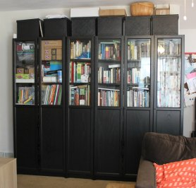 Ikea BILLY bookcases and OXBURG doors small home living room