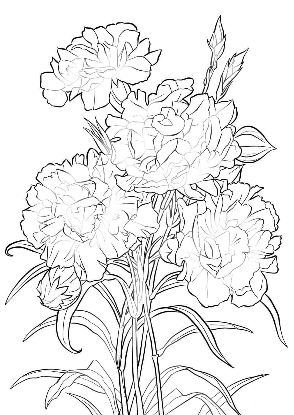 Beautiful Printable Flowers Coloring Pages | colouring pages flowers