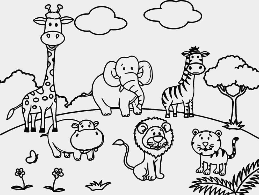 Free Printable Zoo Coloring Pages For Kids   colouring pages for zoo animals