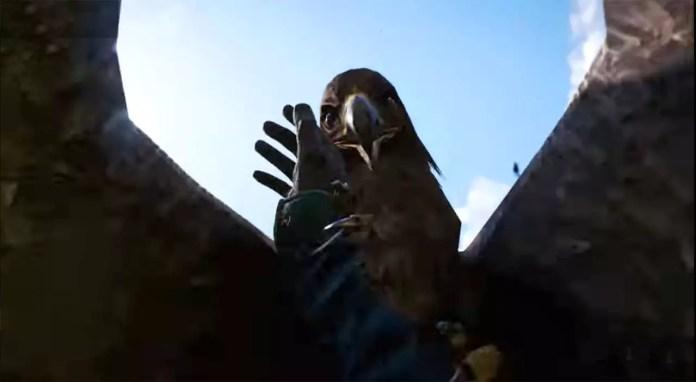Far Cry 4 Black Eagle Attack.