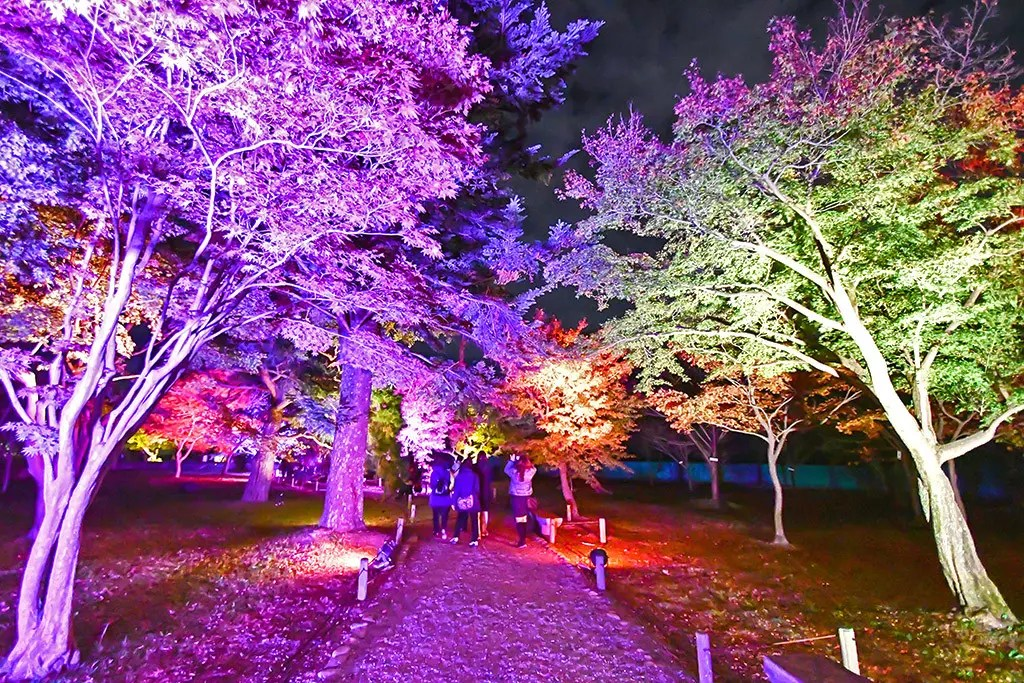 Nijo Castle Night Illumination 2018.