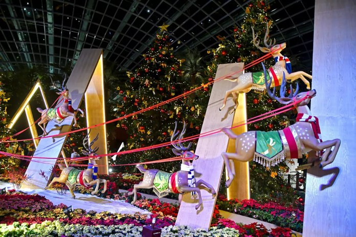 Festive Reindeers at Flower Dome, Gardens by the Bay
