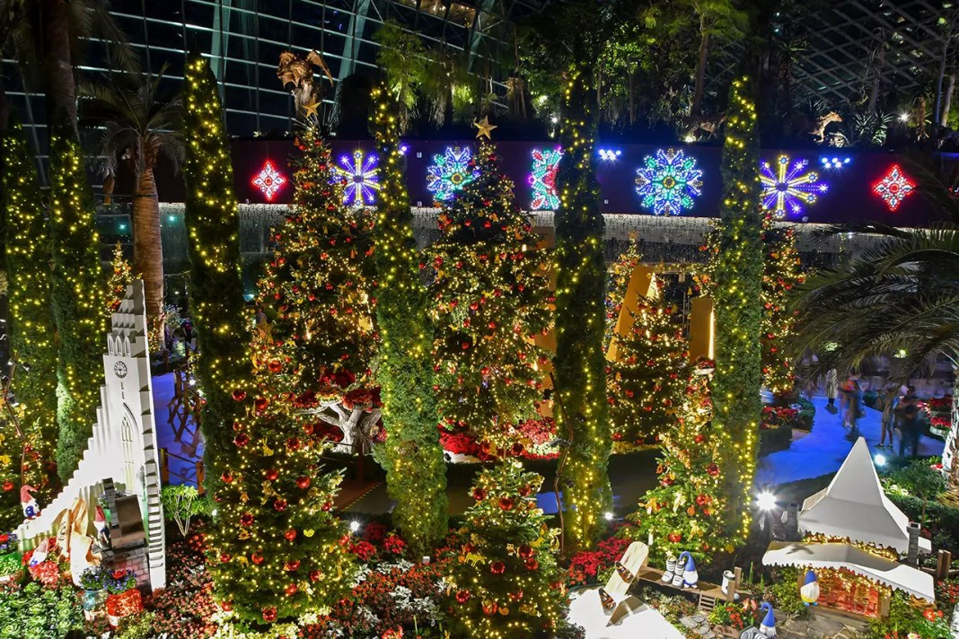 Poinsettia Wishes 2019   Gardens by the Bay, Singapore