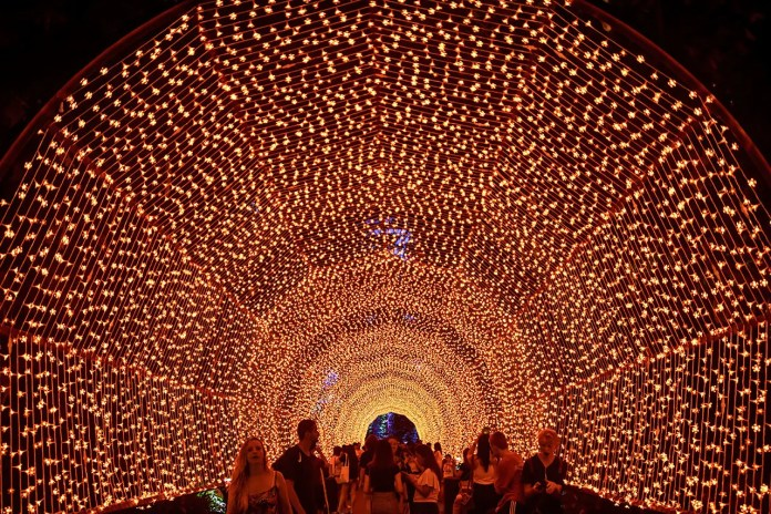 Walk of Peace   Christmas Wonderland 2019
