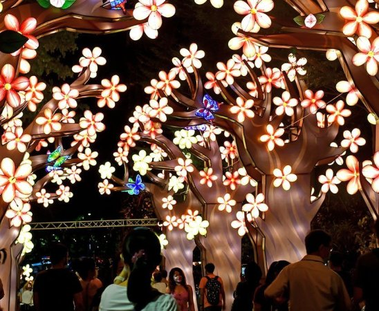 Mid Autumn Festival Light-Up 2020