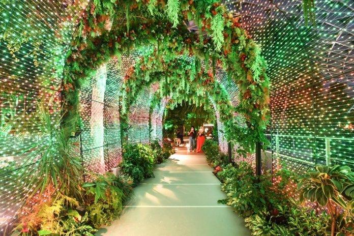 Jewel Changi Airport Christmas Lights