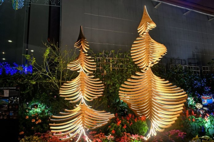 Flower Dome Christmas Trees.