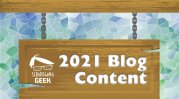 2021 Blog Content Strategy | The Scribbling Geek