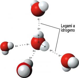 Legami_a_idrogeno_3D