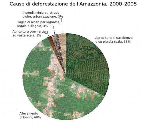 cause-deforestazione-amazzonia