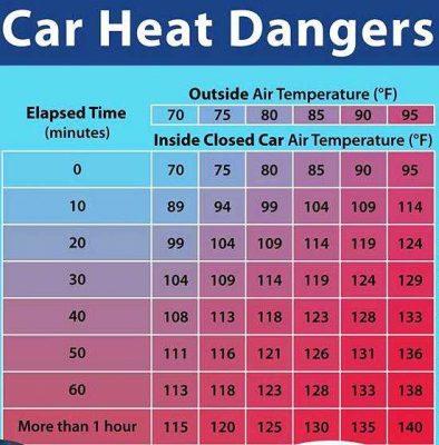 Car Heat Table