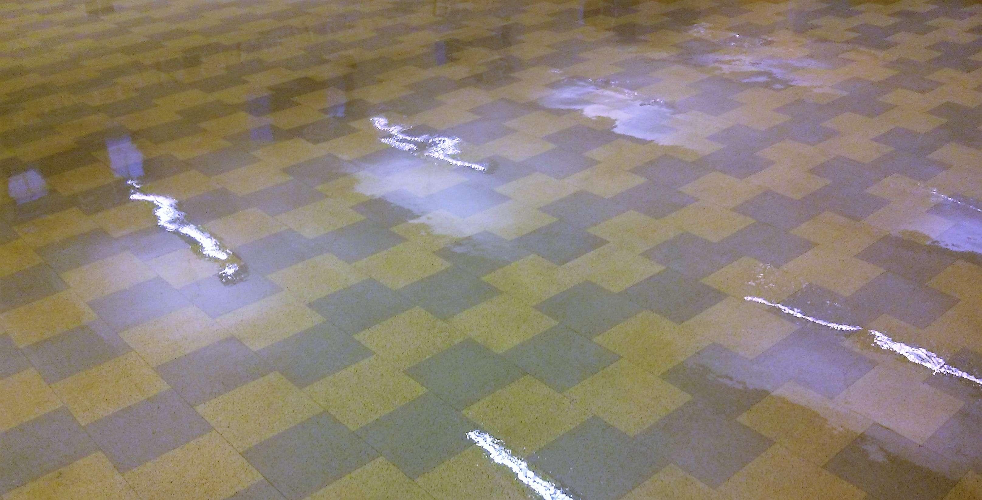 Restore shine to vinyl floor of old vct floor tile in minneapolis old vct floor tile restored in minneapolis dailygadgetfo Gallery