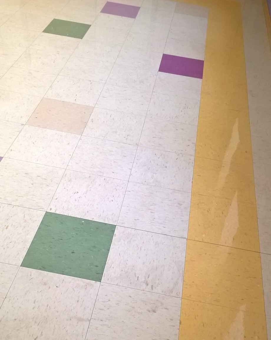 VCT Scrub and Re-Coat Service in St Paul