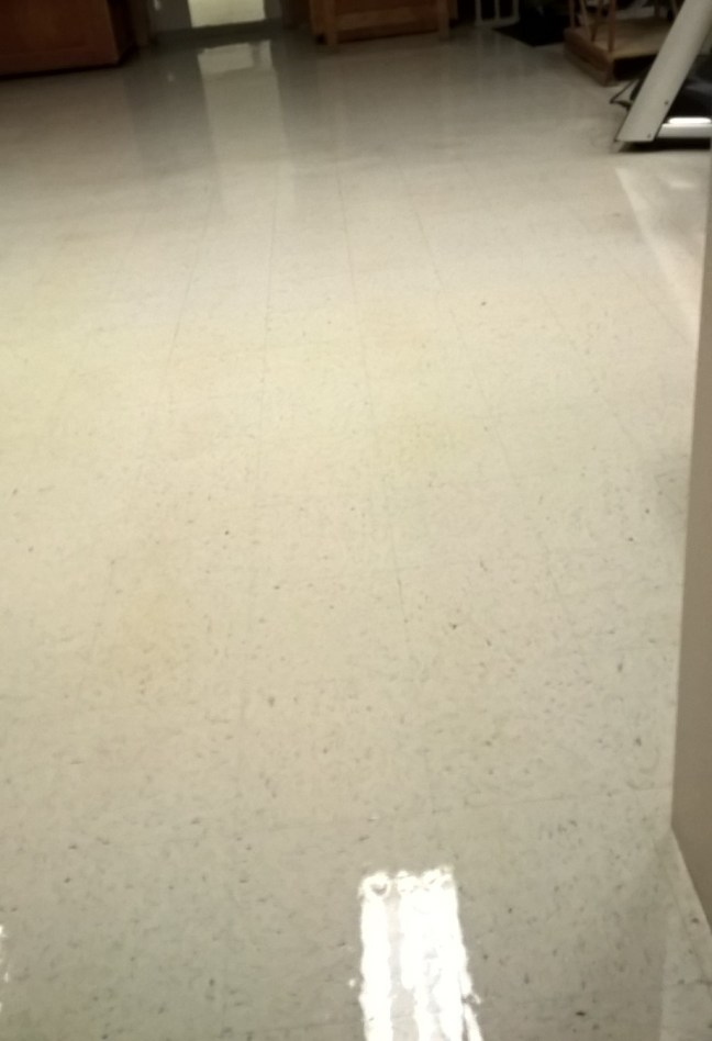 Old VCT Floor Clean Seal Finish in St Paul MN