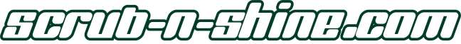 Scrub n Shine dot com Logo