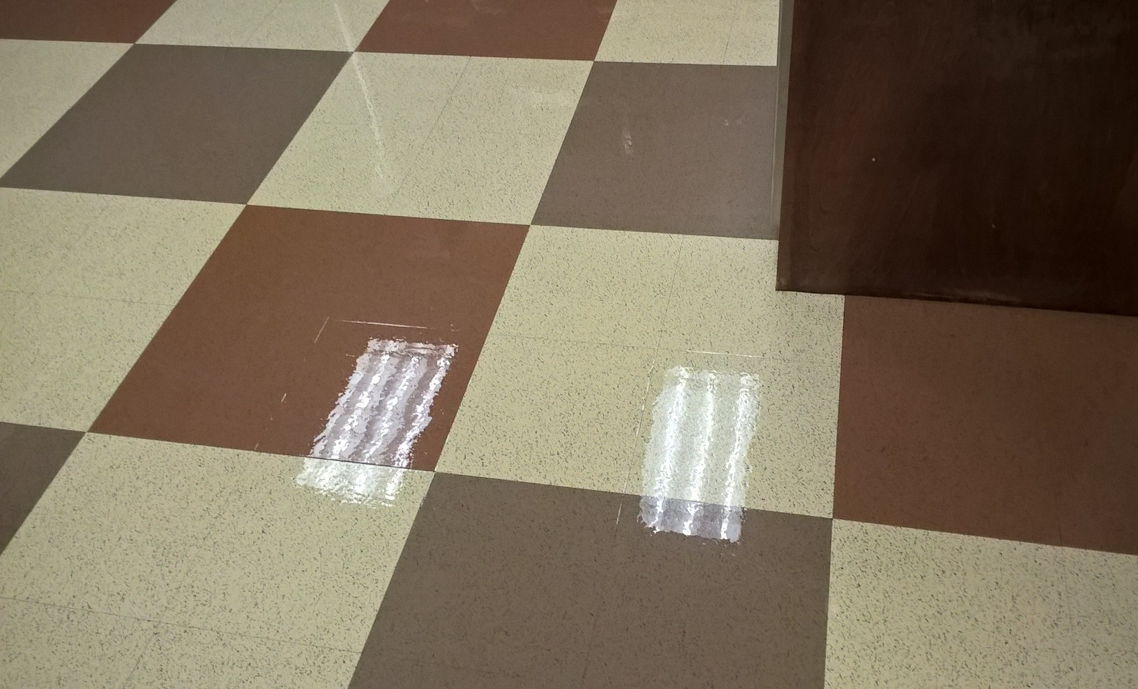 Vinyl Floor Scrub and ReCoat in Chanhassen MN