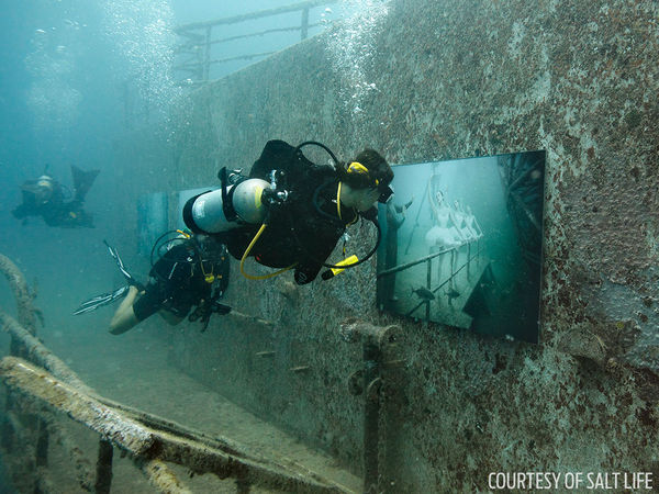 Underwater art exhibit to be attached to the USNS Vadengerg