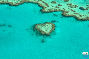 Book a 3 day liveaboard great barrier reef